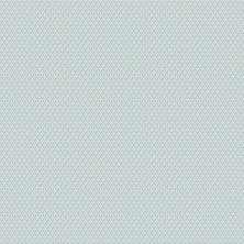 Papel de Parede - Coleção Victor Hugo - AG8106
