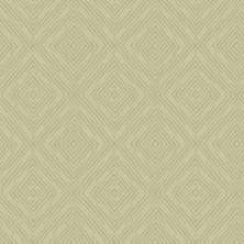 Papel de Parede - Coleção Victor Hugo - AG8205